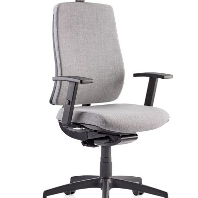 absolute-upholstered-and-mesh-back-high-back-task-chair.-band-1-fabric-107-p
