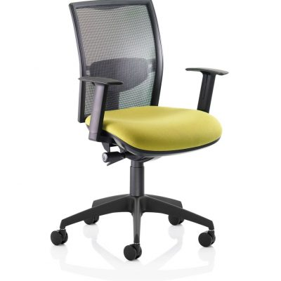 fresh-mesh-back-swivel-mech-with-seat-slide.-band-1-fabric-17-p